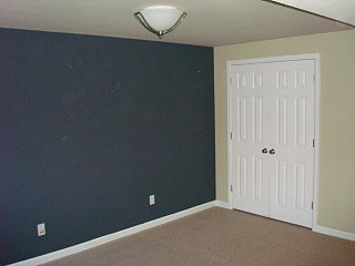 Professional Painting Contractor MN